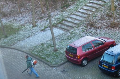 Beetje sneeuw en bladerblaas