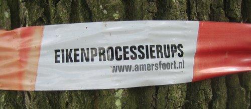 Deze rups is mede mogelijk gemaakt door de gemeente Amersfoort