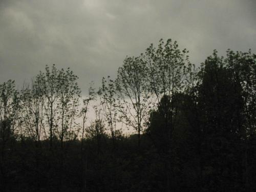 Groene lucht